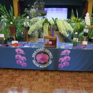 Gold Coast District Orchid Society Inc